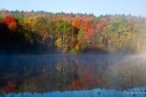 Misty Fall Farm Pond