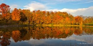 Fall Colors in Farm Pond
