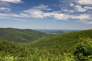 Shenandoah Mountain Overlook