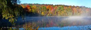 Misty Farm Pond